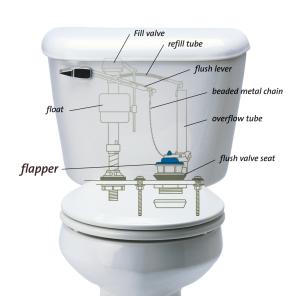 toiletdiagram_300dpi-sized